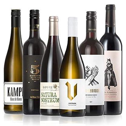 GEILE-WEINE-Weinpaket-WINTERWEINE-6x-075l-Bester-Rotwein-und-Weiwein-fr-die-kalte-Jahreszeit