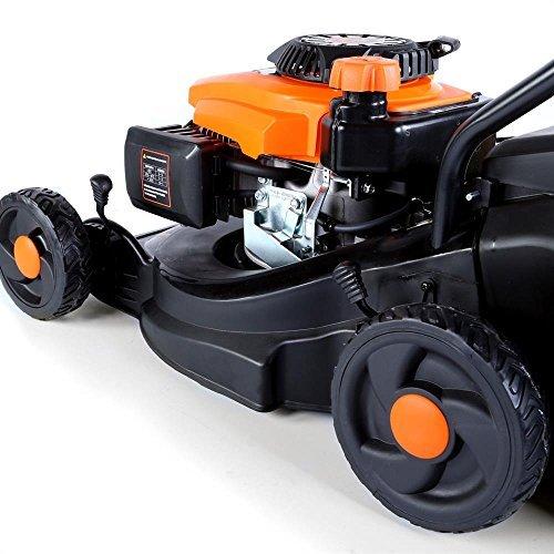 FUXTEC-Benzin-Rasenmher-FX-RM1630-mit-40-cm-und-massivem-Fangkorb-5-fache-Hhenverstellung-besonders-leicht-und-wendig