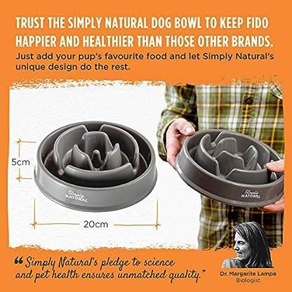 Anti-Schling-Hundenapf-von-Simply-Natural-BPA-freier-Slow-Feeder-fr-Hunde-und-Katzen-Reduziert-Verschlucken-und-beressen-In-einem-verbesserten-Slow-Feeder-Hundenapf