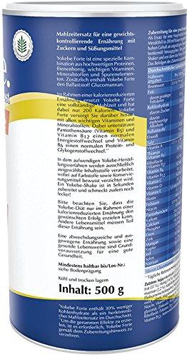 Yokebe Forte Einzeldose, 10 Portionen (1 x 500 g)
