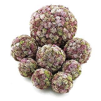 TGG-Sedum-Kugel-rosa-Sedum-Ball-Fette-Henne-knstlich-sehr-dekorativ