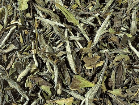 Weier-Tee-BIO-China-FUJIAN-PAI-MU-TAN-TOP-Qualitt-1kg