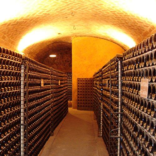Canals-Canals-Subirana-Chardonnay-Premium-Weiwein2-x-075-l