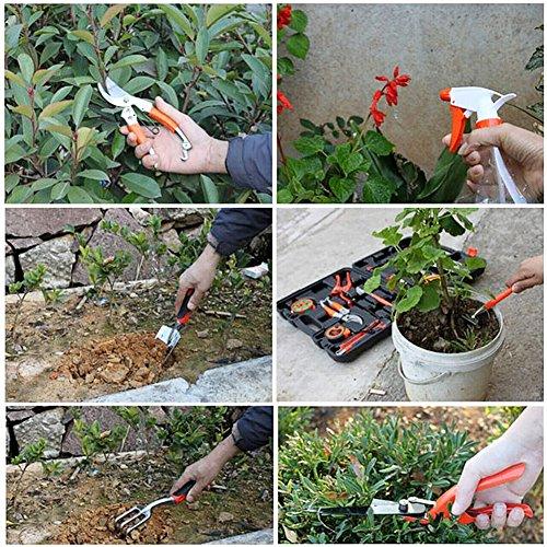 12-teiliger-Garten-Werkzeug-Set-Dazone-Gartengerte-Handwerkzeug-im-Tragekoffer-Gartenwerkzeuge-Kombi-Set-fr-Gartenfreund-u-Profigrtner-tolle-Geschenkset