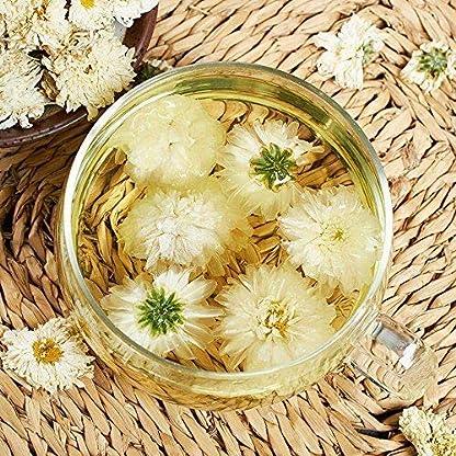TooGet-Natrliche-GongJu-Chrysanthemenblumen-getrocknete-weie-Chrysanthemen-Blumen-Grohandel-118-ml
