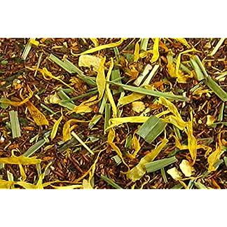 Teeparadies-Lw-Ingwer-Zitrone-RT