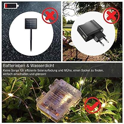 Tobbiheim-100-LEDs-Batterie-Lichterkette-Auen