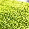 Qoosea-Mop-Pad-3-Stck-Reveal-Moppkopf-Ersatzpad-Reinigung-Wet-Mop-Pad-Kche-Mop-Reinigungspads-Mikrofaser-Ersatz-fr-Reveal-Mops-Waschbare-Spray-Mops
