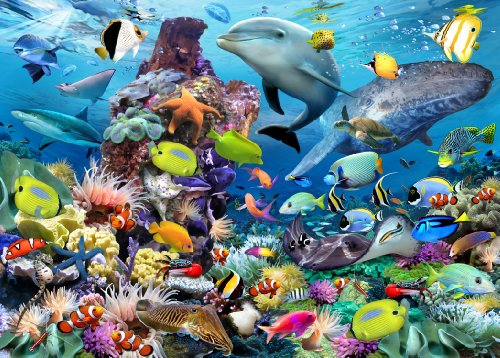 Ravensburger-Puzzle-Jewels-of-the-Sea-1000-Einzelteile