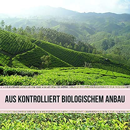 Bio-Weier-Tee–Pai-Mu-Tan-Tee-lose-100-g–weich-duftig-und-aromatisch-ca-40-Tassen-Tea2Be-by-Sarenius
