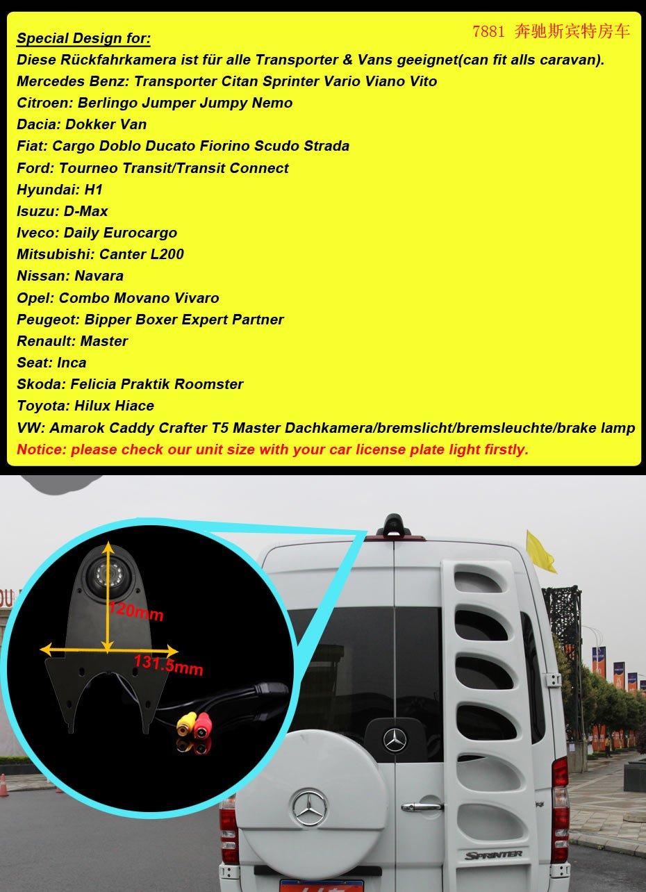 Transporters-Viano-Vito-Transit-Ducato-VW-Crafter-T5