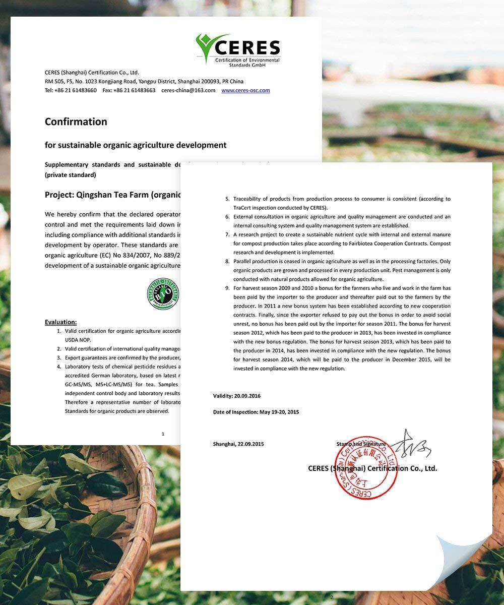 Bio-Sencha-Grntee-1000g-Bio-I-Top-Japan-Style-Sencha-zum-1kg-Spitzenpreis-I-Mild-leicht-grasig-dabei-feinherb-und-blumig-I-Fairbiotea-Zertifikat-I-DE-KO-005