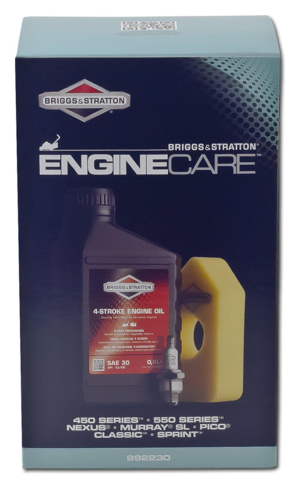 Briggs-Stratton-Motorpflege-Kit