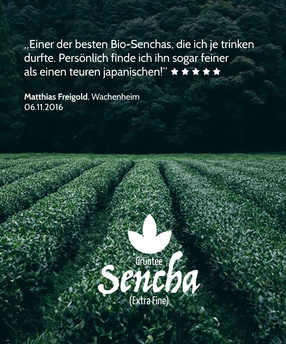 Bio-Sencha-Grntee-250g-Top-Japan-Style-Spitzenpreis-Vorratspackung-fr-100-Tassen-Mild-leicht-grasig-dabei-feinherb-und-blumig-Fairbiotea-Zertifikat-DE-KO-005