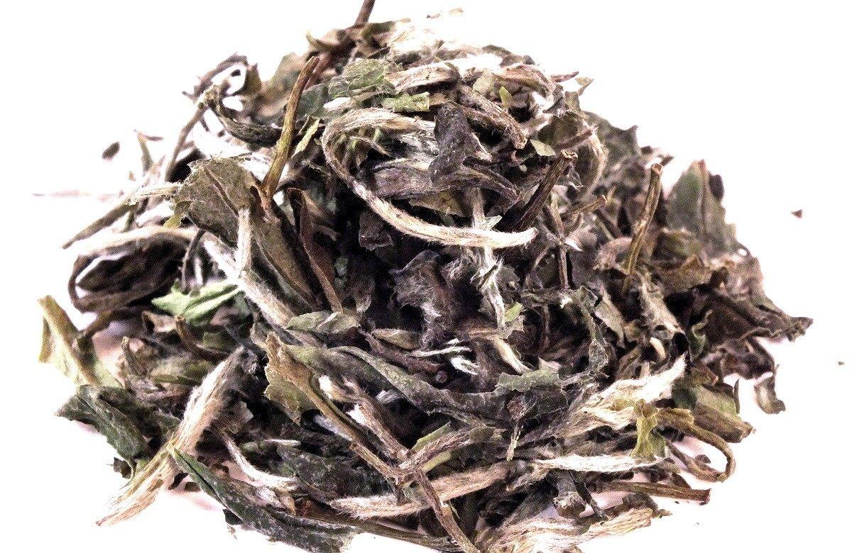 Pai-Mu-Tan-Weisse-Ponie-White-Spring-Hairpoint-Highgrown-Grner-Tee-China