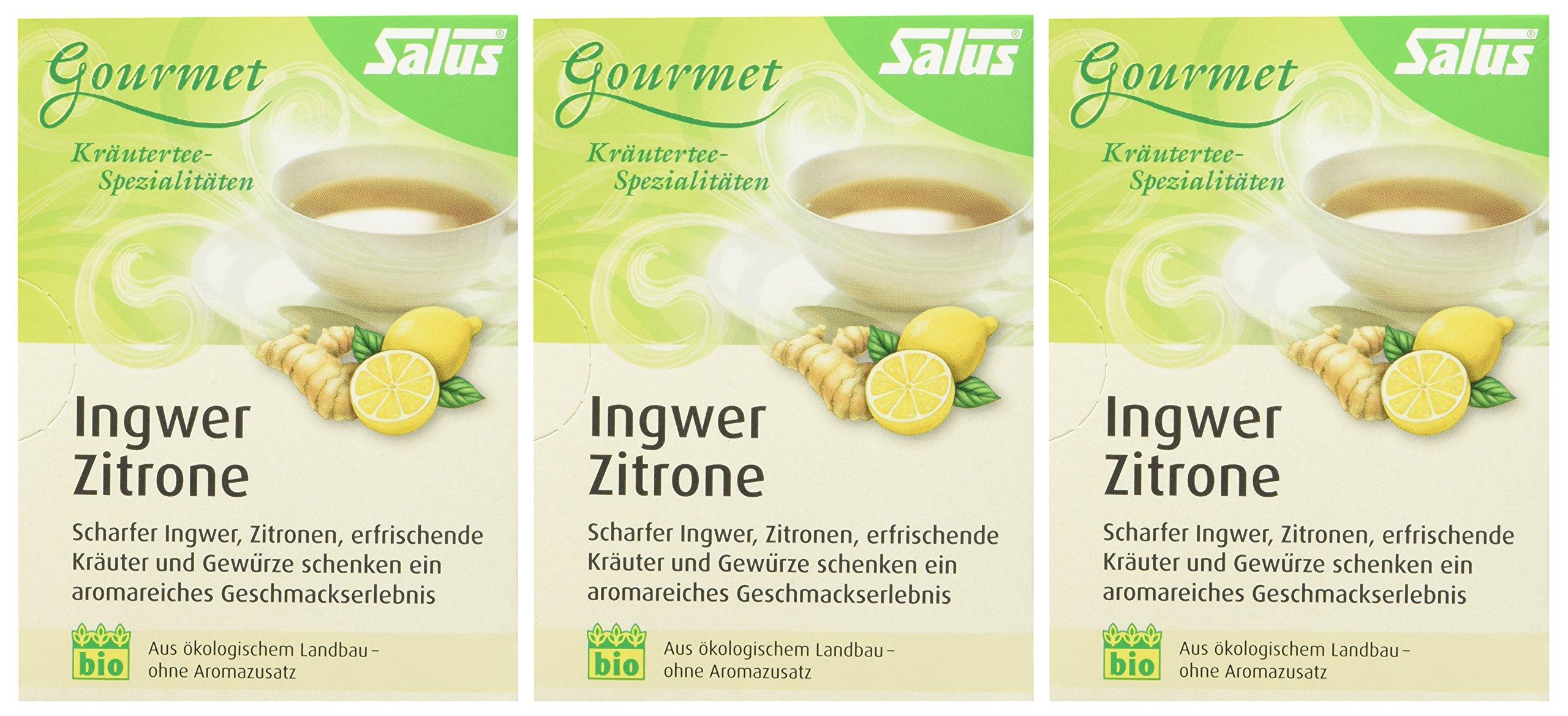 Salus-Ingwer-Zitrone-Kruter-Frchtetee-3er-Pack-3-x-30-g