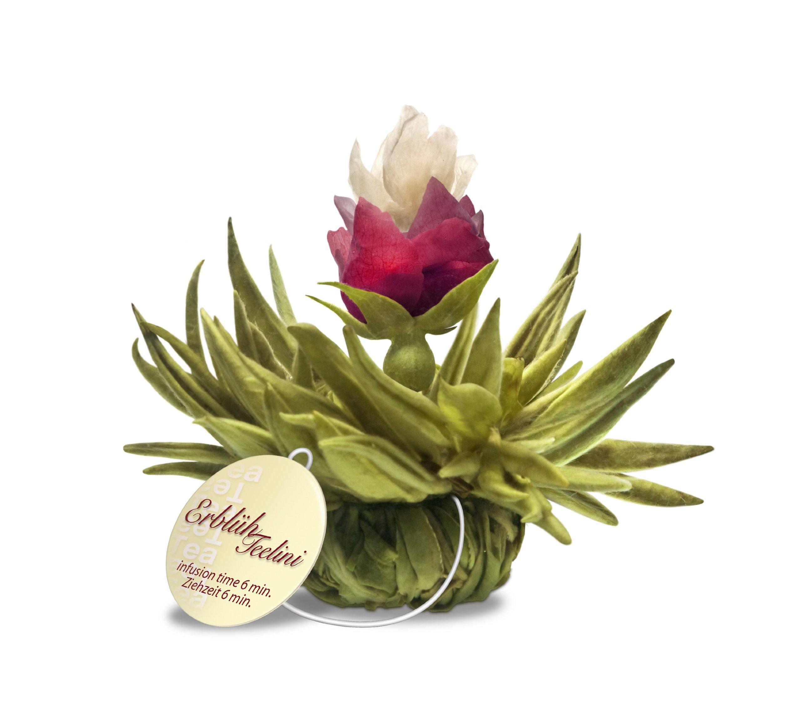 Creano-Teeblumen-Variation-im-exklusiven-Tassenformat-ErblhTeelini-8-Teeblten-in-4-verschiedenen-Sorten-Weier-Tee